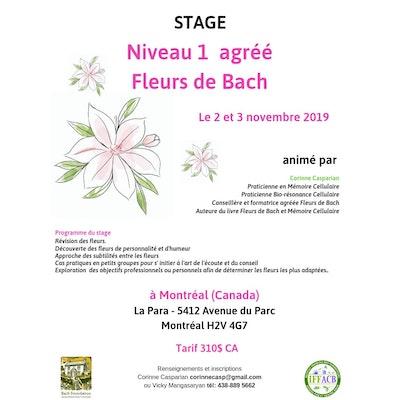 Formation Fleurs de bach Niveau 1 /  2-3 NOV 2019 10h à 17h