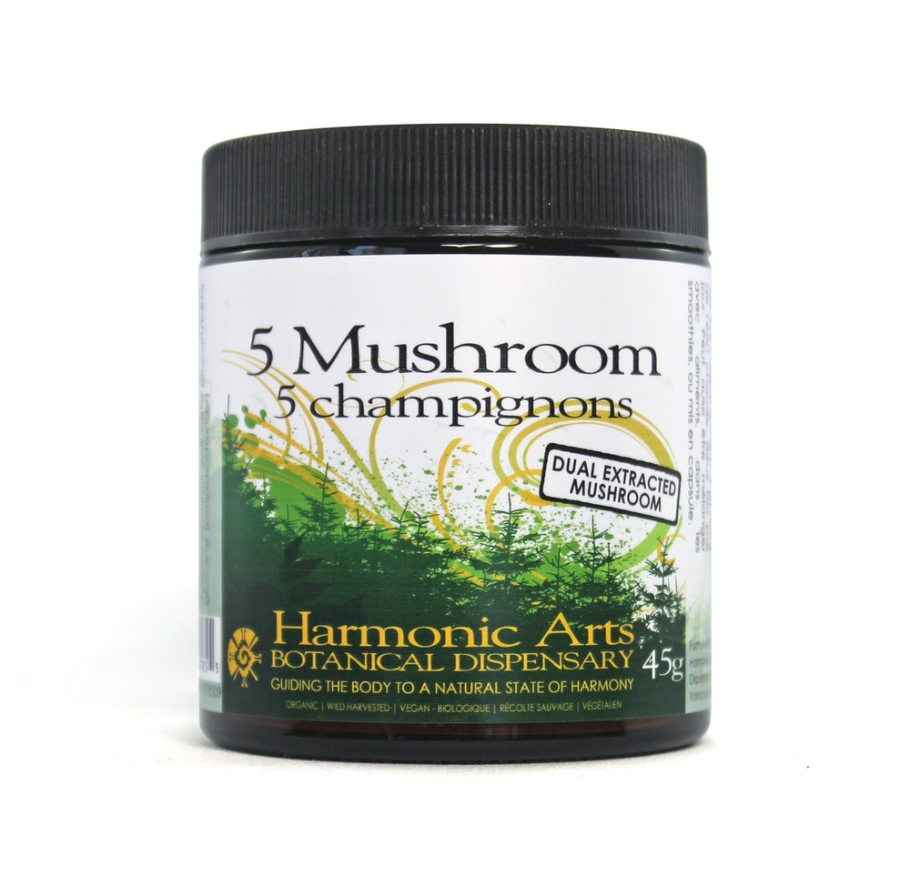 5 Mushroom Dual Extracted Powder