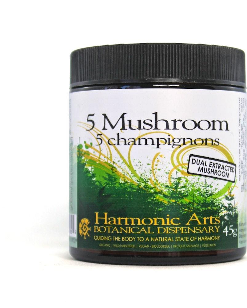 5 Mushroom Dual Extracted Powder