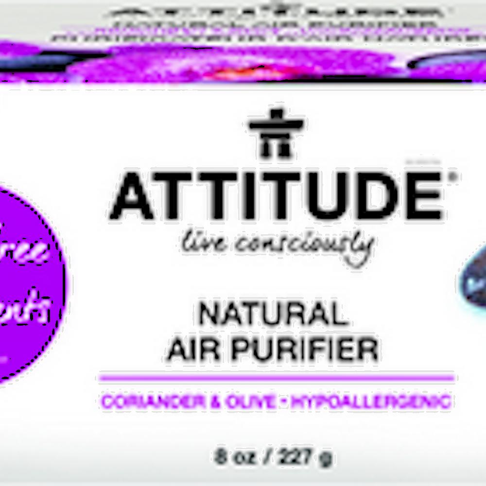 Air Purifier Coriander & Olive