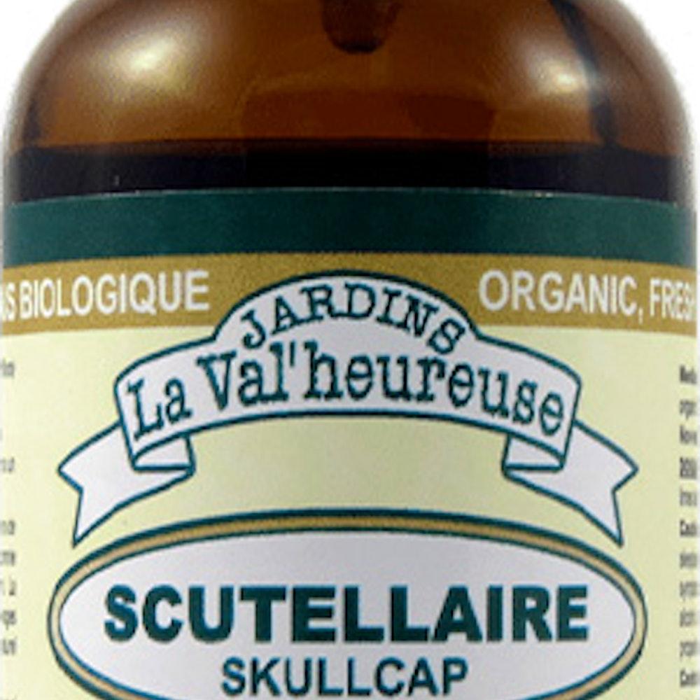 L Herbier Du Midi Produits Naturels scutellaire