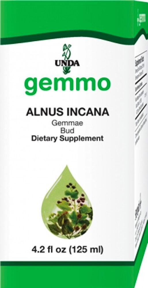 Alnus Incana